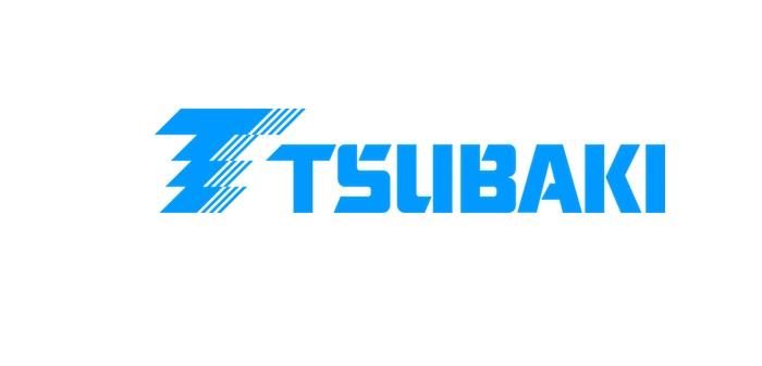 cadenas-tsubaki