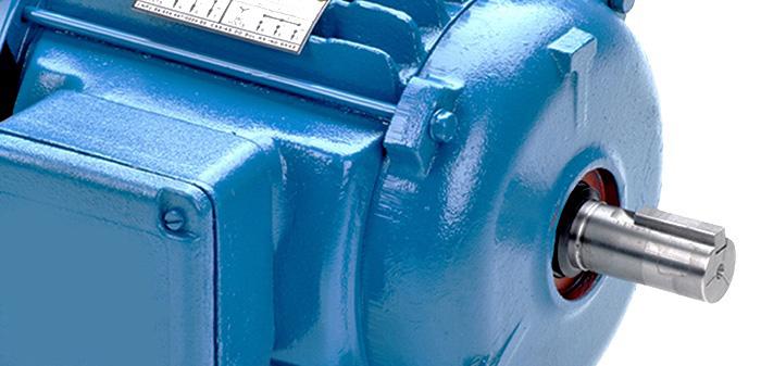 motor-trifasico2